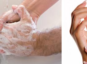 Allegrini - Igiena mainilor